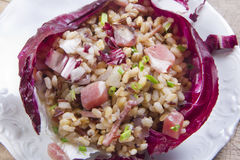 Brown rice with red radicchio and speck Royalty Free Stock Images