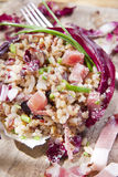 Brown rice with red radicchio and speck Stock Photography