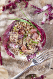 Brown rice with red radicchio and speck Stock Image