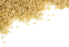 Brown rice scattered against white with copyspace Stock Photos