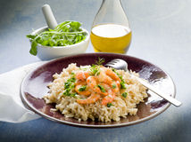 Brown rice with shrimp and arugula Stock Photos