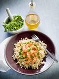 Brown rice with shrimp and arugula. Pesto royalty free stock photography