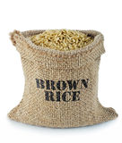 Brown rice. In small burlap sack Royalty Free Stock Photography