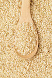 Brown rice on spoon Royalty Free Stock Images