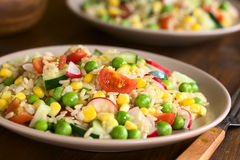 Brown Rice and Vegetable Salad Royalty Free Stock Image