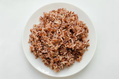 Brown Rice On White Plate. royalty free stock image