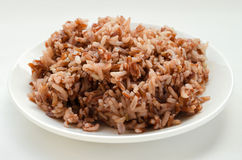 Brown Rice On White Plate. Cooked brown rice on the white plate is ready for meal Royalty Free Stock Image