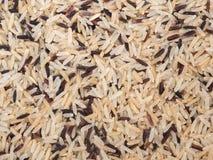 Brown rice. White rice. mix of rice. Royalty Free Stock Image