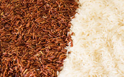 Brown Rice and White Rice Royalty Free Stock Photo