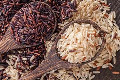 Brown rice Royalty Free Stock Photo