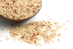 Brown rice. Is in wooden blow Stock Image