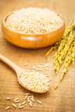 Brown rice on wooden spoon and bowl Royalty Free Stock Photography