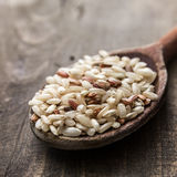 Brown rice Stock Photos