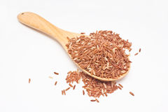 Brown rice with wooden spoon. Stock Images