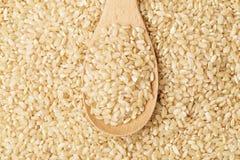Brown rice on wooden teaspoon Stock Image