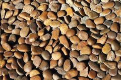 Brown river pebbles. Texture background Royalty Free Stock Photo