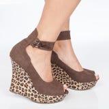 Brown riveste di pelle le scarpe con la zeppa con i pizzi messi nei piedi della donna su fondo bianco Immagine Stock Libera da Diritti