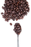 Brown roasted coffee bean with tea spoon on white Royalty Free Stock Photos
