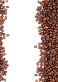 Brown roasted coffee beans Stock Images