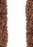 Brown roasted coffee beans Royalty Free Stock Photo