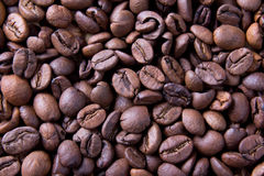 Brown roasted coffee beans, background texture Royalty Free Stock Image