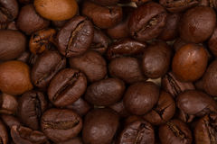 Brown roasted coffee beans macro. Ten, twenty, coffee beans shot in the studio macro optics Stock Images