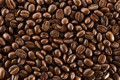 Brown roasted coffee beans, seed on dark background. Aroma, black caffeine drink. Closeup isolated energy mocha. Cappuccino ingredient royalty free stock images