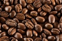 Brown roasted coffee beans, seed on dark background. Aroma, black caffeine drink. Closeup isolated energy mocha. Cappuccino ingredient stock photography
