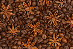 Brown roasted coffee beans and star anise macro. Coffee beans and and a large of star anise shot in the studio macro optics Royalty Free Stock Images