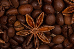 Brown roasted coffee beans and star anise macro. Ten, twenty, coffee beans and star anise shot in the studio macro optics Royalty Free Stock Image