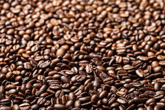 Coffee bean background Royalty Free Stock Photography