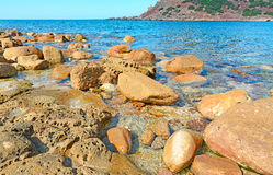 Brown rocks and blue water. Brown rocks in Porticciolo beach, Sardinia Royalty Free Stock Photo