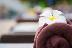 Brown roll towel with plumeria on beach chair Stock Image