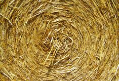 Brown Rolled Hay Royalty Free Stock Image