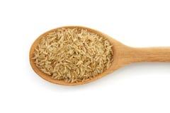 Brown ryż w łyżce odizolowywającej Zdjęcie Stock
