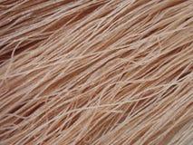 Brown ryż wysuszony kluski obrazy stock