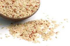 Brown ryż obraz stock