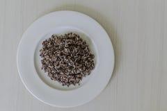 Brown ryż w bielu talerzu Fotografia Royalty Free