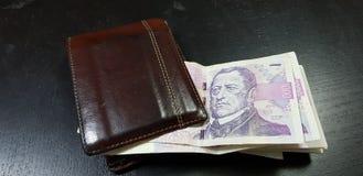 Brown rzemienny portfel z republika czech coruna fotografia stock