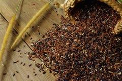 Brown ` s Tajlandzcy ryż Obrazy Stock