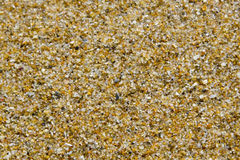 Brown sand background. Of a beach Royalty Free Stock Photography