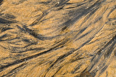 Brown sand beach texture abstract background Royalty Free Stock Photography