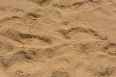 Brown sand at the beach There are traces of people walking. Royalty Free Stock Photos