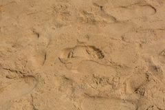 Brown sand at the beach There are traces of people walking. Royalty Free Stock Photography