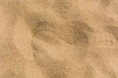 Brown sand at the beach There are traces of people walking. Stock Photos