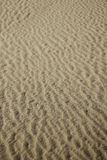 brown sand dune Royalty Free Stock Photos