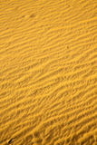 the brown sand    dune in the sahara Stock Image