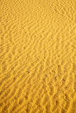 the brown sand dune in Royalty Free Stock Image