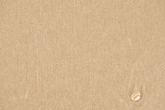 Brown sand texture for background. Sandy beach with beige shell closeup. Top view Stock Photos