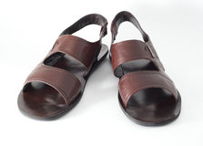 Brown sandals Stock Image